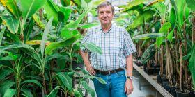 Banánovník miluji a kdybych si měl vybrat jedinou rostlinu, se kterou budu pracovat, určitě bych si vybral právě tuto, říká Jaroslav Doležel.