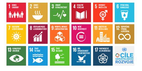 Nový žebříček sleduje, jak univerzity naplňují cíle udržitelného rozvoje OSN. Zdroj obrázku: OSN.