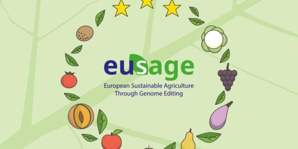 Graphic_EUSAGE-600x0-172518778.jpg