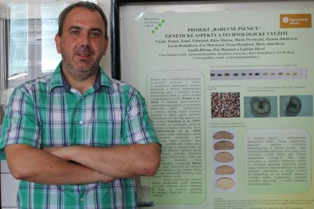 Biolog Tomáš Vyhnánek zMendelovy univerzity se podílel na zavedení nové odrůdy pšenice do praxe.