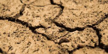 sand-rock-texture-dry-brown-soil-726223-pxherecom-344x172-2414622618.jpg
